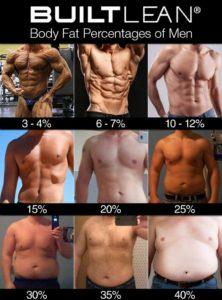 男性 体脂肪率