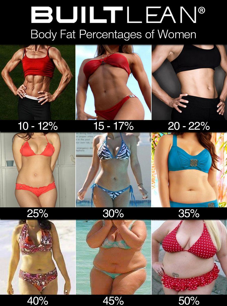 女性 体脂肪率